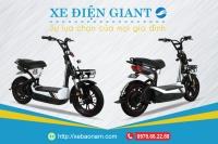 Xe điện Giant - Sự lựa chọn của mọi gia đình