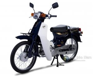 Xe máy Cub 82 JAPAN 50cc (Không cần bằng lái)
