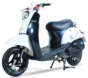 Xe ga 50cc scoopy màu trắng yếm đen