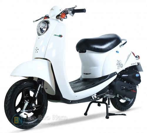 Xe ga 50cc Scoopy Trắng Yếm Trắng