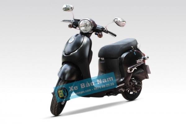 Xe ga 50cc Giorno tem nổi - màu đen nhám