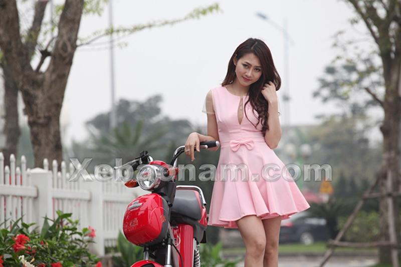 Xe đạp điện Nijia Dibao Eco 2016
