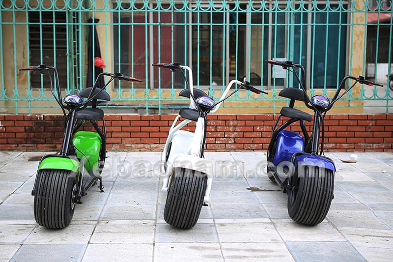 Xe đạp điện Harley Davidson (BN1) - Chính hãng