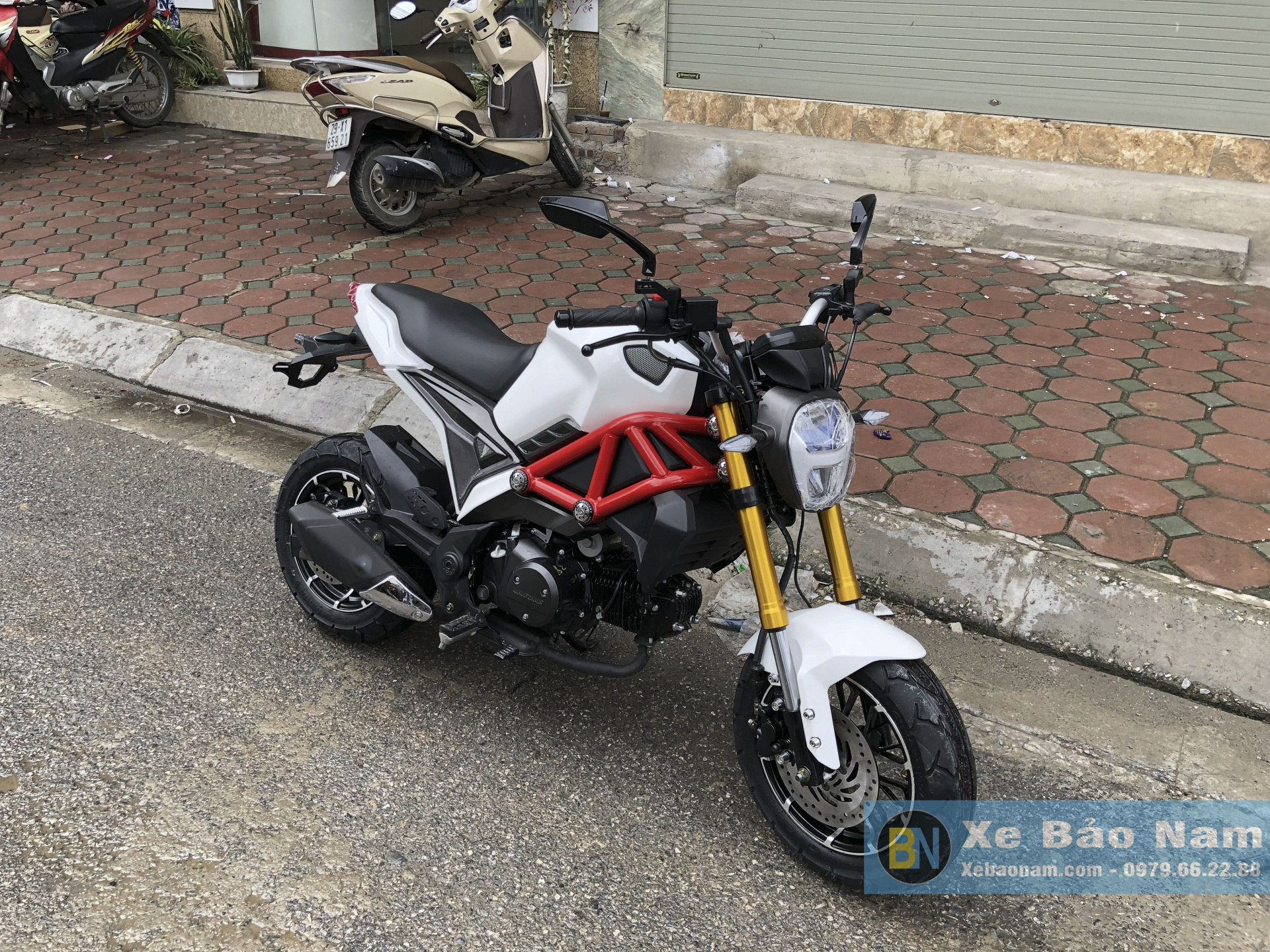 ducati-monster-mini-110cc-doi-moi-2
