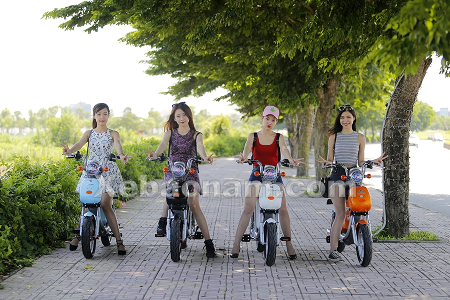 Xe đạp điện Nijia 20A Suzika chính hãng nhập khẩu | Xebaonam.com