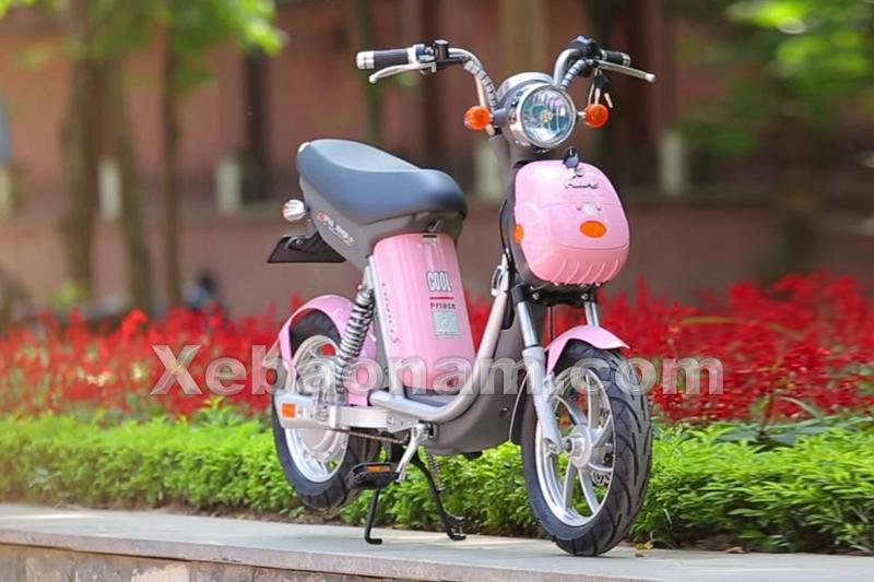 Xe đạp điện Nijia S 12A chính hãng nhập khẩu | Xebaonam.com