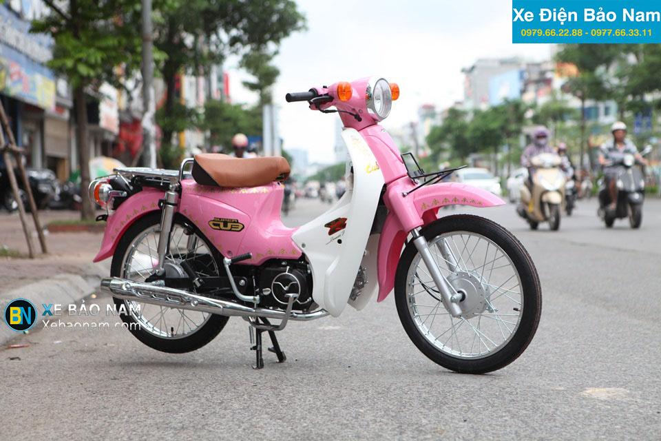 Giá xe 50 Indo màu hồng 2