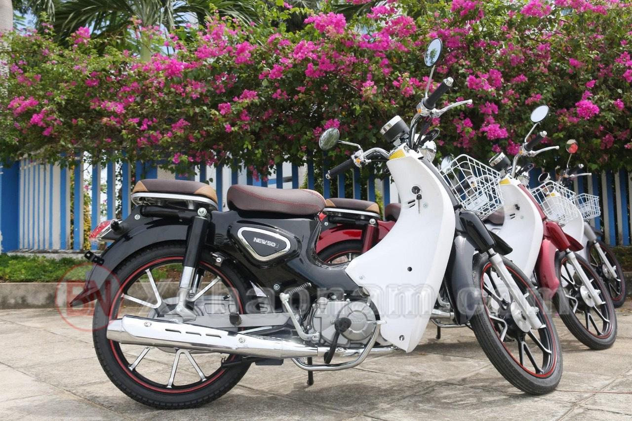 Xe cub ally new 50cc đầu vênh