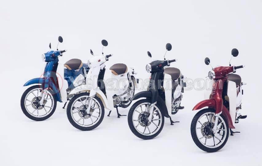 Các màu xe cub 50cc classic vvip