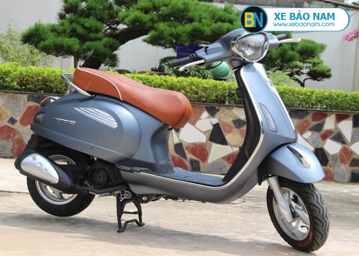 xe-ga-50cc-roma-se-dk-bike-mau-xam-1