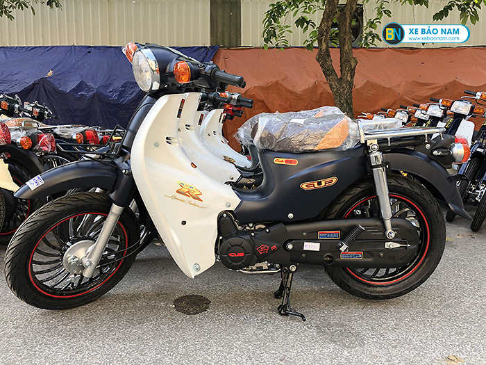 xe Honda Cub 1