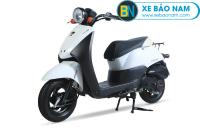 Xe ga 50cc Honda Today - dòng xe cho các cậu ấm - cô chiêu