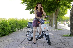 Bộ sưu tập các màu xe đạp điện Nijia 20A