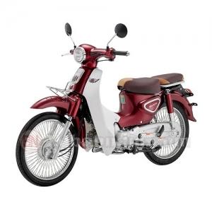 Xe Máy Cub 50cc Ally New 2021