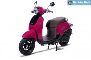 Xe ga 50cc Giorno Màu Hồng Sẫm (Hết hàng)
