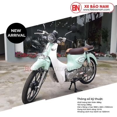 Xe Máy 50cc Cub New Ally 2020 Màu Xanh (vành đúc )