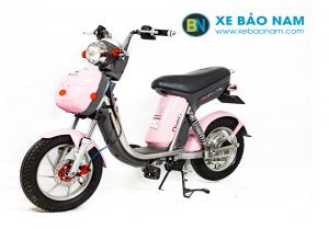 Xe đạp điện Nijia phanh đĩa đồng hồ điện tử