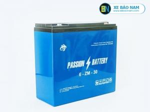 Ắc quy xe máy điện Passion 12V-30AH