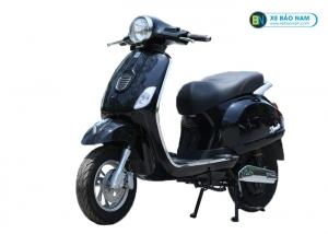 Xe Xyndi S màu đen