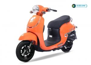 Xe ga 50cc Giorno tem nổi - Màu Vàng Cam