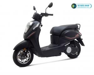 Xe máy điện EV Elite màu đen