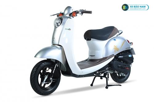 Xe ga 50cc Scoopy màu Bạc New