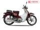 Xe Máy 50cc Cub New Ally 2020 ( Vành Đúc )