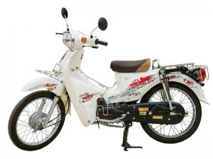 Xe Cub 81 Kitafu Detech (Espero Đà Nẵng & HCM)