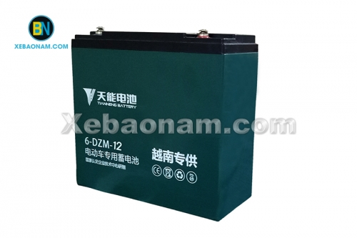 Ắc quy xe điện Tianneng 48V - 12Ah