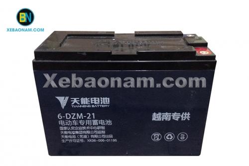 Ắc quy xe điện Tianneng 48V - 21Ah